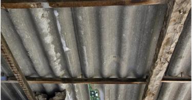 asbestos remediation services