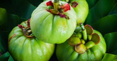 still-life-with-fresh-garcinia-cambogia-on-wooden-background-thai-herb