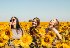 A group of women amid a sunflower field