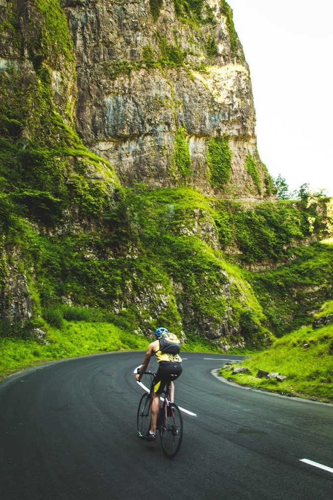 A cyclist surrounded by beautiful greenery.