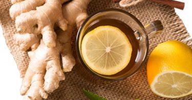 TAL'S GINGER BLAST exclusive gourmet 100% organic custom loose herbal tea blend