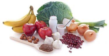 Sources of prebiotics
